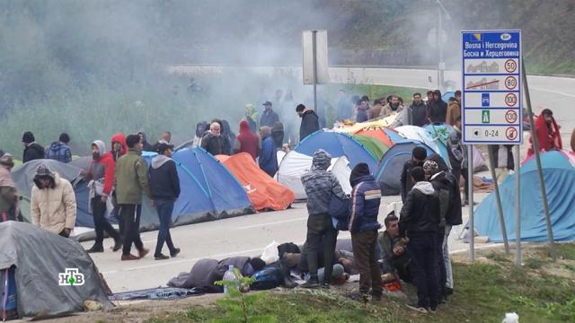 «Случится катастрофа»: Европа готовится кновому наплыву беженцев.Ближний Восток, Босния, Германия, Европа, беженцы.НТВ.Ru: новости, видео, программы телеканала НТВ
