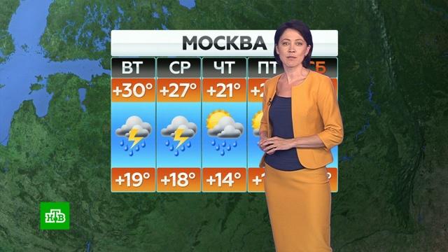 Прогноз погоды на 7 июля.Прогноз погоды предоставлен «Метео-ТВ».погода, прогноз погоды.НТВ.Ru: новости, видео, программы телеканала НТВ