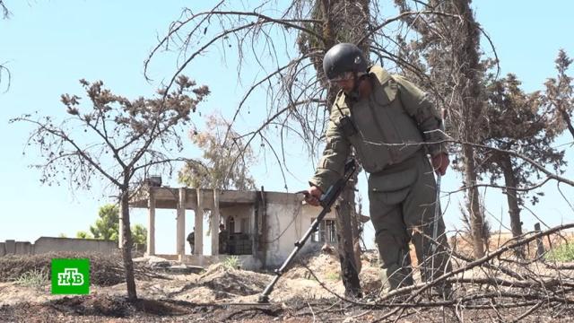 Саперы вСирии нашли иобезвредили десятки боеприпасов за сутки.Сирия, войны и вооруженные конфликты.НТВ.Ru: новости, видео, программы телеканала НТВ