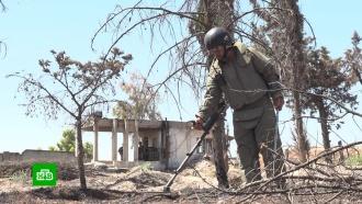 Саперы вСирии нашли иобезвредили десятки боеприпасов за сутки