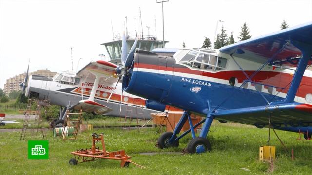 Что мешает превратить малую авиацию вудобный вид транспорта.авиация, самолеты, экономика и бизнес.НТВ.Ru: новости, видео, программы телеканала НТВ