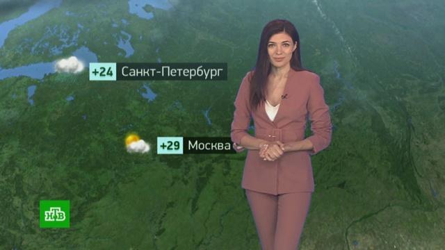 Утренний прогноз погоды на 6июля.погода, прогноз погоды.НТВ.Ru: новости, видео, программы телеканала НТВ