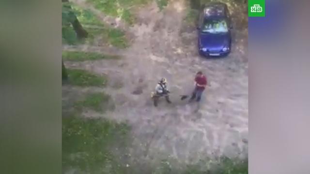 Дворник погнался сгазонокосилкой за недовольным жителем Костромы.Кострома, курьезы, нападения.НТВ.Ru: новости, видео, программы телеканала НТВ