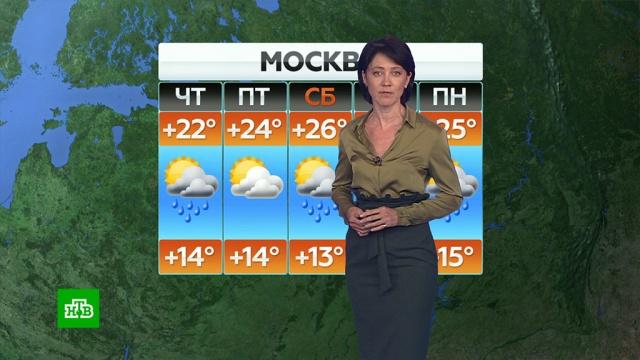 Прогноз погоды на 9 июля.погода, прогноз погоды.НТВ.Ru: новости, видео, программы телеканала НТВ