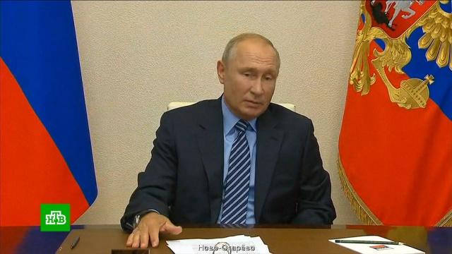 Путин назвал голосование по Конституции ввысшей степени демократическим.Путин, конституции.НТВ.Ru: новости, видео, программы телеканала НТВ