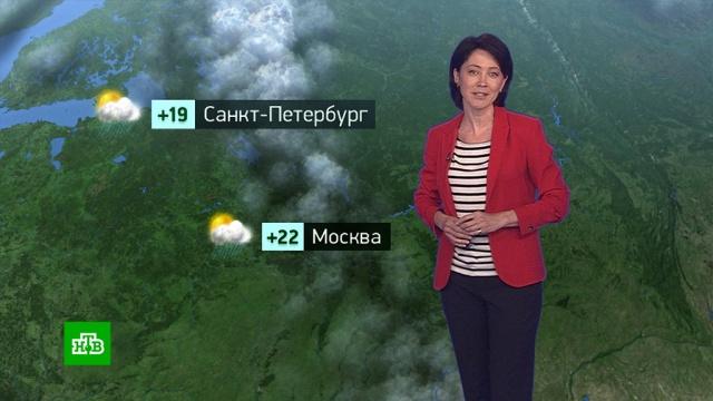 Утренний прогноз погоды на 9июля.погода, прогноз погоды.НТВ.Ru: новости, видео, программы телеканала НТВ