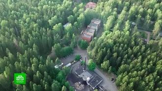 Петербуржцы готовы защищать репинский лес от застройки