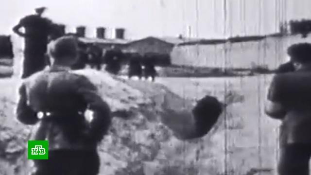 «Головы младенцев разбивали остены»: чудовищные свидетельства зверств нацистов.Великая Отечественная война, Вторая мировая война, история, фашизм.НТВ.Ru: новости, видео, программы телеканала НТВ