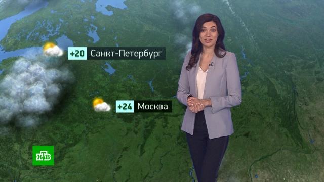 Утренний прогноз погоды на 10июля.погода, прогноз погоды.НТВ.Ru: новости, видео, программы телеканала НТВ