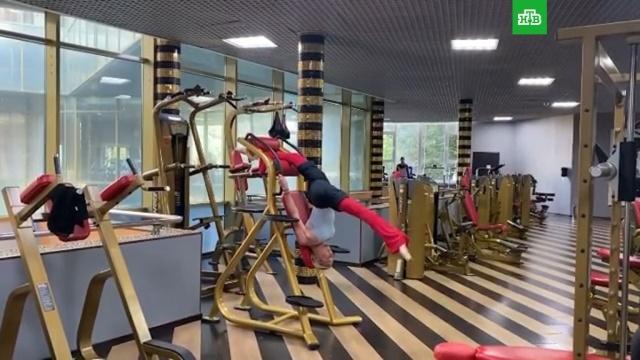 Анастасия Волочкова застряла на тренажере, делая шпагат.Волочкова, знаменитости, шоу-бизнес.НТВ.Ru: новости, видео, программы телеканала НТВ