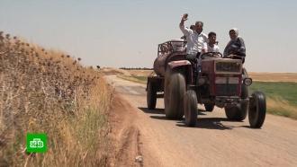Сирийские боевики уничтожили посевы фермеров иранили военных