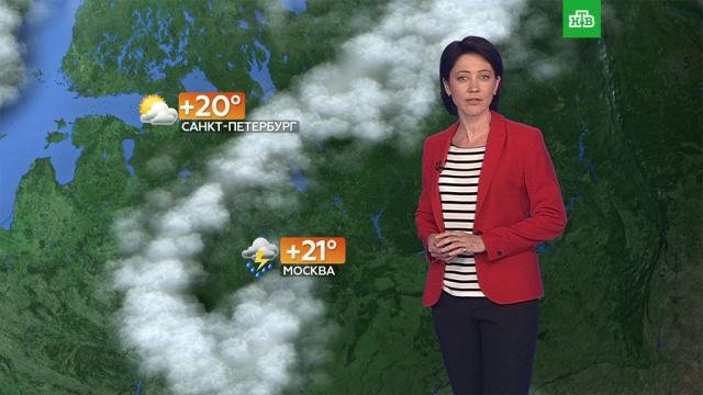 Прогноз погоды на 15июля.погода, прогноз погоды.НТВ.Ru: новости, видео, программы телеканала НТВ