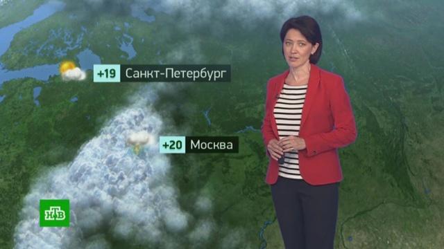 Утренний прогноз погоды на 14июля.погода, прогноз погоды.НТВ.Ru: новости, видео, программы телеканала НТВ