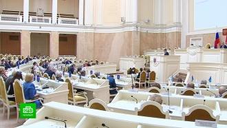 Парламент Петербурга не разрешил отказываться от общественных слушаний и ушел на каникулы