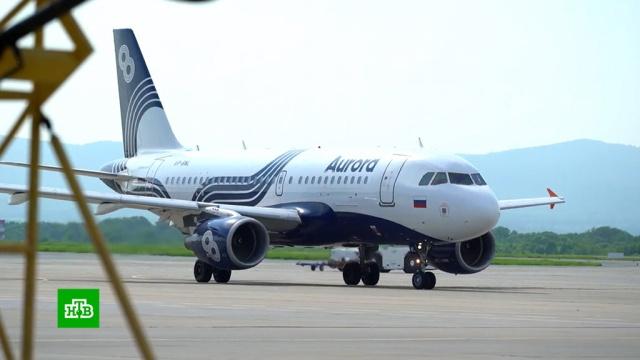 Дальневосточную авиакомпанию создадут на базе «Авроры».экономика и бизнес, Дальний Восток, авиакомпании, компании, самолеты.НТВ.Ru: новости, видео, программы телеканала НТВ