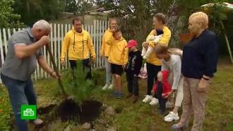 От Сибири до Австралии: по всей планете продолжают высаживать деревья вчесть фронтовиков