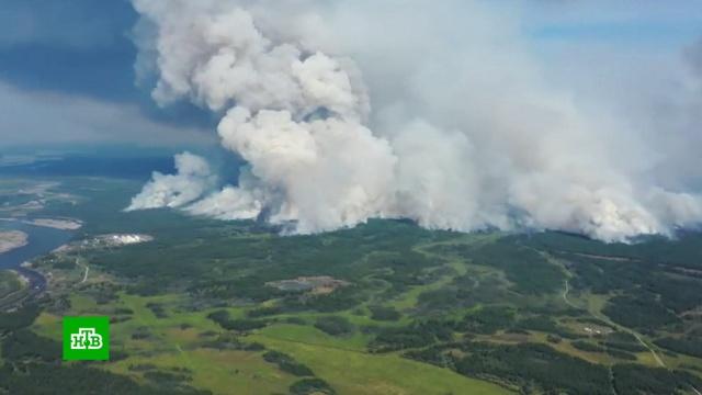 ВЯкутии лесные пожары приближаются кнефтебазе иселу.Якутия, лесные пожары.НТВ.Ru: новости, видео, программы телеканала НТВ
