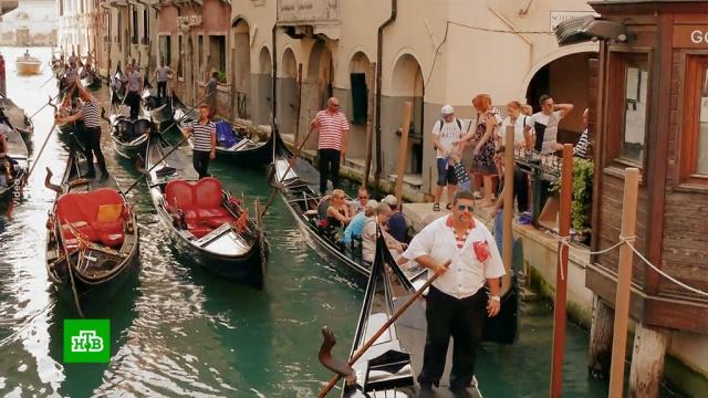 Венеция ввела ограничения из-за толстых туристов.Венеция, туризм и путешествия.НТВ.Ru: новости, видео, программы телеканала НТВ