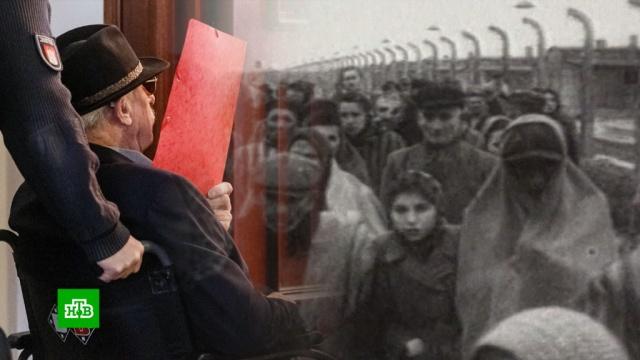 ВГермании 93-летний экс-надзиратель концлагеря получил условный срок.Вторая мировая война, Германия, фашизм, холокост.НТВ.Ru: новости, видео, программы телеканала НТВ
