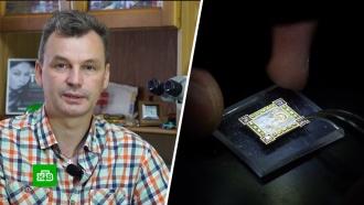 Сибирский умелец из пыли ирисовых зернышек создает самые маленькие вмире шедевры