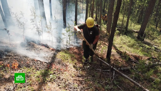 ВЯкутии для борьбы слесными пожарами вызывают искусственные дожди.Якутия, лесные пожары.НТВ.Ru: новости, видео, программы телеканала НТВ