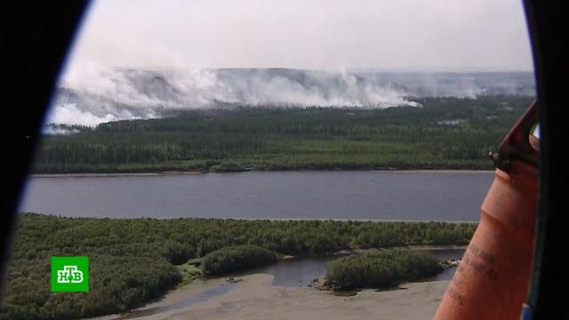 Масштабы бедствия поражают: вЯкутии леса горят даже за полярным кругом.Якутия, лесные пожары.НТВ.Ru: новости, видео, программы телеканала НТВ
