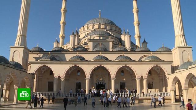 Главный праздник ислама: как вЧечне отмечают Курбан-байрам.Чечня, религия, торжества и праздники.НТВ.Ru: новости, видео, программы телеканала НТВ