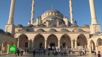 Главный праздник ислама: как вЧечне отмечают <nobr>Курбан-байрам</nobr>