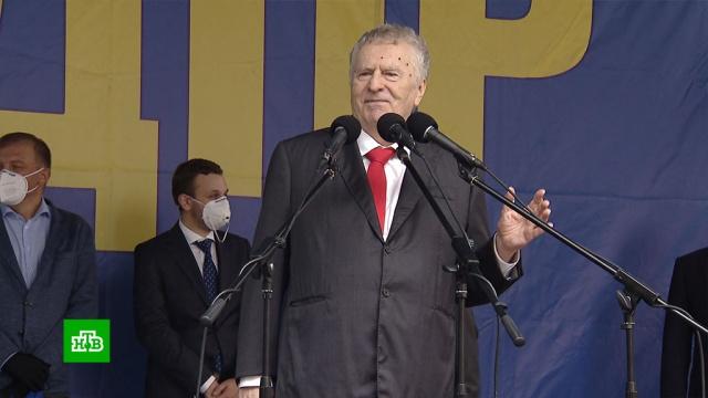 Жириновский отмечает 50-летие на политической арене.Жириновский, ЛДПР, юбилеи, партии.НТВ.Ru: новости, видео, программы телеканала НТВ