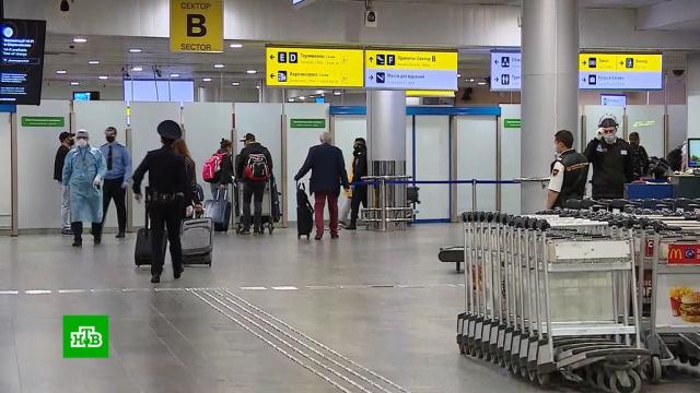 ВМоскву прилетел первый «посткарантинный» рейс из Стамбула.авиация, коронавирус, туризм и путешествия.НТВ.Ru: новости, видео, программы телеканала НТВ