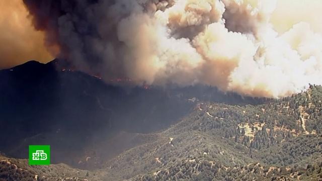 Вишневая долина на юге Калифорнии охвачена лесными пожарами.США, лесные пожары, пожары.НТВ.Ru: новости, видео, программы телеканала НТВ