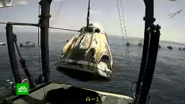 Астронавты из Crew Dragon поблагодарили российскую «суперкоманду».Илон Маск, США, космонавтика, космос.НТВ.Ru: новости, видео, программы телеканала НТВ