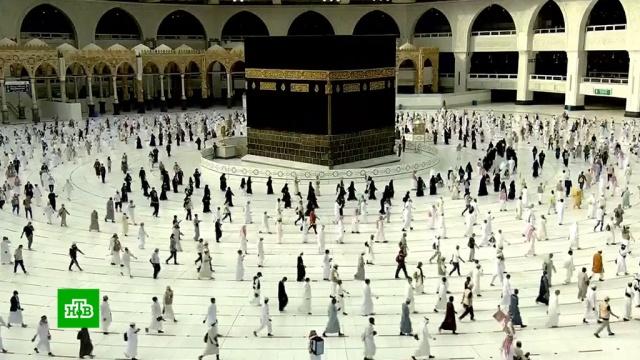 В Мекке паломники передвигаются по специальным линиям на полу.ислам, коронавирус, паломники, эпидемия, Саудовская Аравия.НТВ.Ru: новости, видео, программы телеканала НТВ