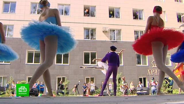 Исцеление «Лебединым»: как петербургский балет поддерживает тяжелобольных детей.Санкт-Петербург, балет, благотворительность, больницы, дети и подростки, онкологические заболевания, театр.НТВ.Ru: новости, видео, программы телеканала НТВ