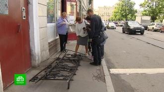 Петербурженка и корреспондент НТВ не дали украсть кованую решетку из особняка Игеля