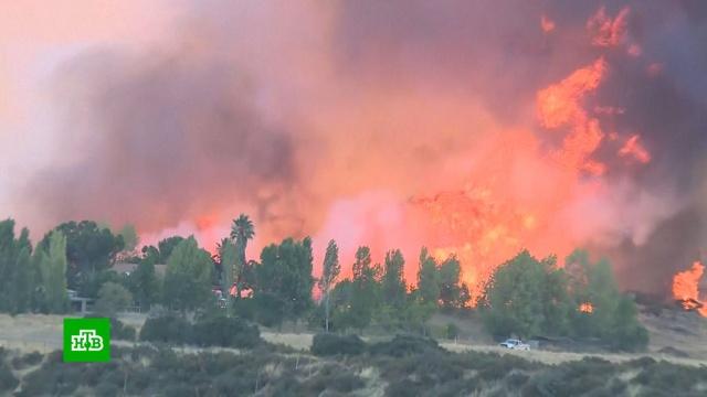 ВКалифорнии из-за лесных пожаров эвакуируют 8тысяч человек.США, лесные пожары, пожары.НТВ.Ru: новости, видео, программы телеканала НТВ