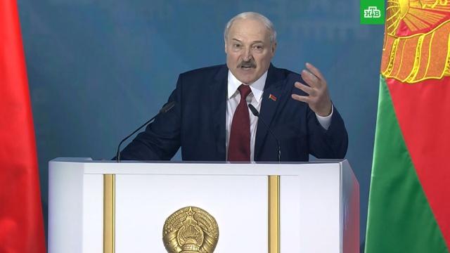 Лукашенко назвал соперников на выборах «несчастными девочками» и «фанерными марионетками».Белоруссия, Лукашенко, выборы.НТВ.Ru: новости, видео, программы телеканала НТВ