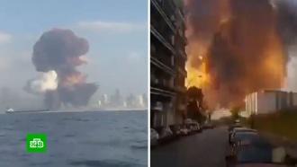 Взрыв в Бейруте лишил жилья 300 тысяч человек