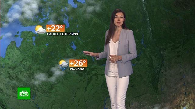 Прогноз погоды на 6августа.погода, прогноз погоды.НТВ.Ru: новости, видео, программы телеканала НТВ