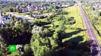 Поселок под Петербургом готовы защищать от будущей трассы