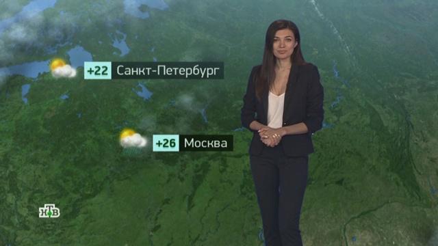 Утренний прогноз погоды на 6августа.погода, прогноз погоды.НТВ.Ru: новости, видео, программы телеканала НТВ