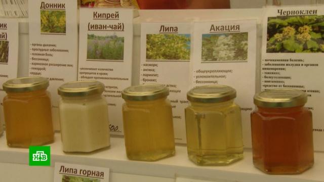Коломенская ярмарка готова удивить экзотическими сортами меда.Москва, мед, торговля, ярмарки и рынки.НТВ.Ru: новости, видео, программы телеканала НТВ