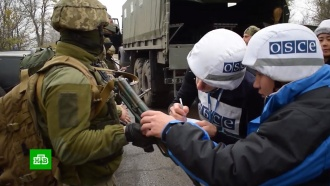 ОБСЕ впервые за пять лет не зафиксировала нарушений режима перемирия вДонбассе