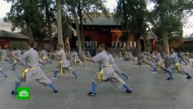 Китай возмущен «позорящими страну» постановочными боями.Интернет, Китай, единоборства, спорт.НТВ.Ru: новости, видео, программы телеканала НТВ