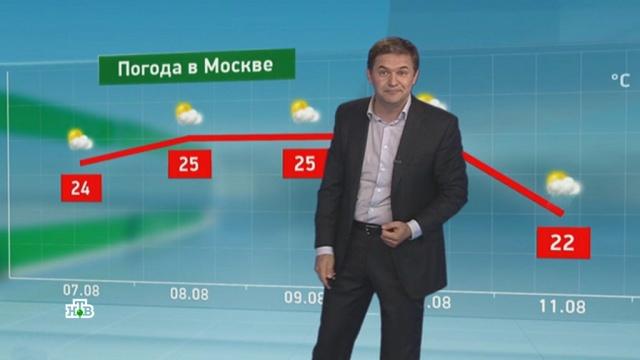 Утренний прогноз погоды на 7августа.погода, прогноз погоды.НТВ.Ru: новости, видео, программы телеканала НТВ