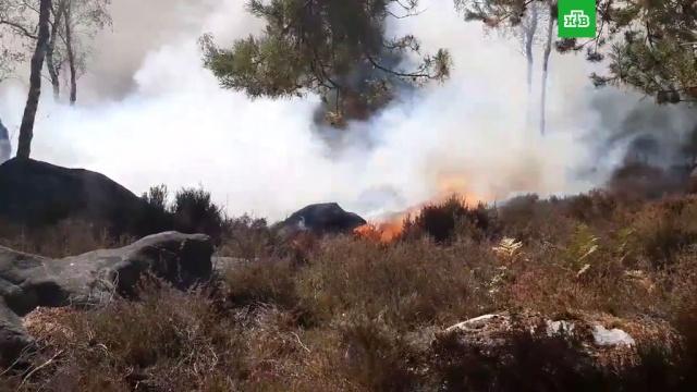Мощный пожар в заповеднике близ Парижа.Франция, пожары.НТВ.Ru: новости, видео, программы телеканала НТВ