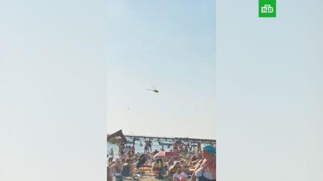 Нашествие стрекоз на пляже Анапы.Анапа, Краснодарский край, жара, лето, море, насекомые, пляжи.НТВ.Ru: новости, видео, программы телеканала НТВ