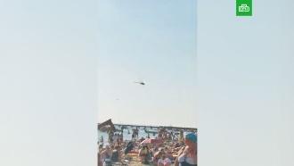 Нашествие стрекоз на пляже Анапы