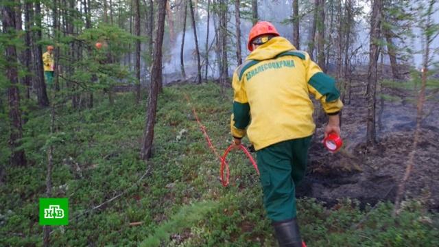 Спасатели направленными взрывами пытаются остановить пожары вЯкутии.Якутия, лесные пожары.НТВ.Ru: новости, видео, программы телеканала НТВ