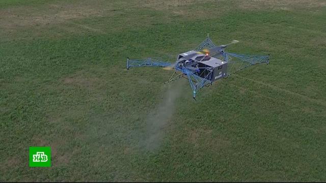 В России начались испытания первого тяжелого промышленного дрона.авиация, беспилотники, технологии.НТВ.Ru: новости, видео, программы телеканала НТВ